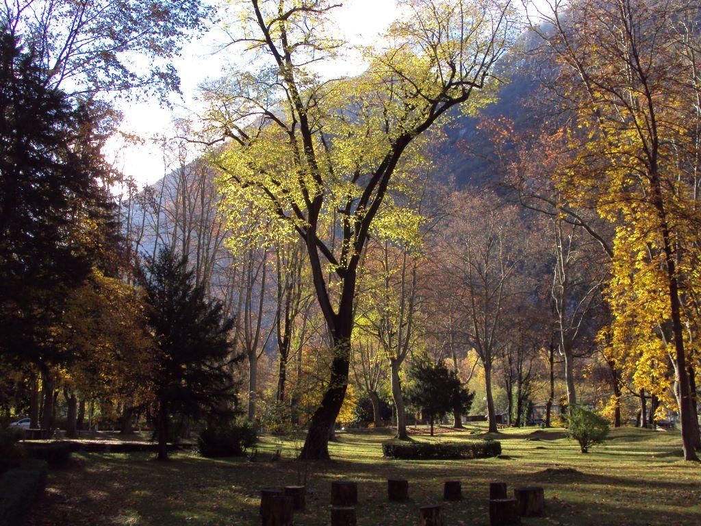 Parc thermal - Thermes Ussat-les-Bains